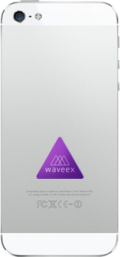 waveex2